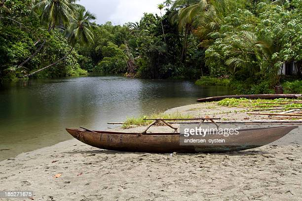 Canoe with tropical forest background