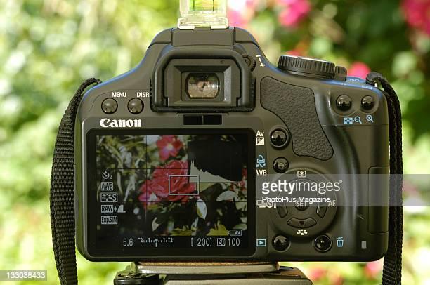 A Canon450D SLR camera Malmesbury June 16 2010