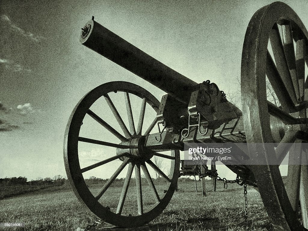 Canons On Grassy Field