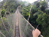 A canopy bridge in the Amazon