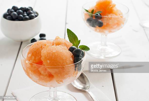 Cantaloupe Granita with Blueberries Horizontal