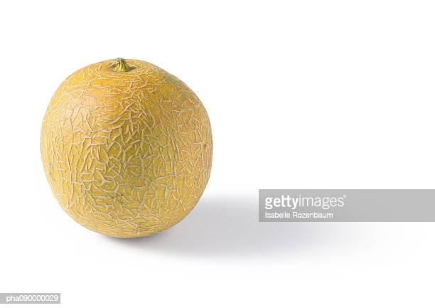 Cantaloupe melon, white background