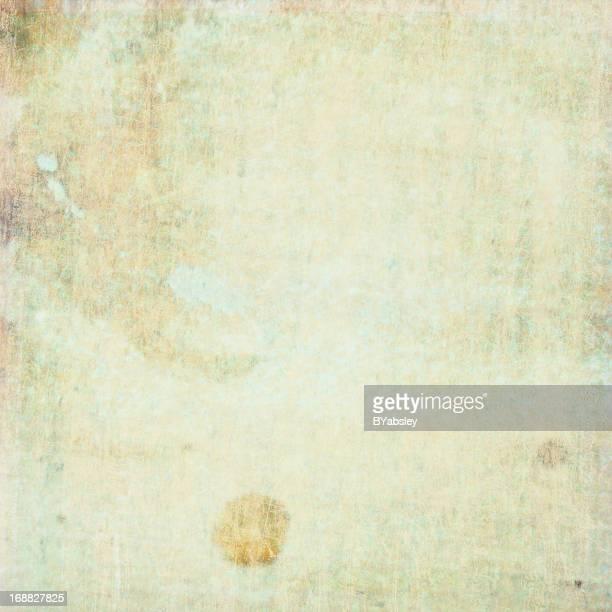 Canvas12