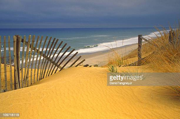 Cape Cod Sea Shore with Fence in Sand