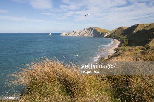 Cape Kidnappers coastline. : Stock-Foto