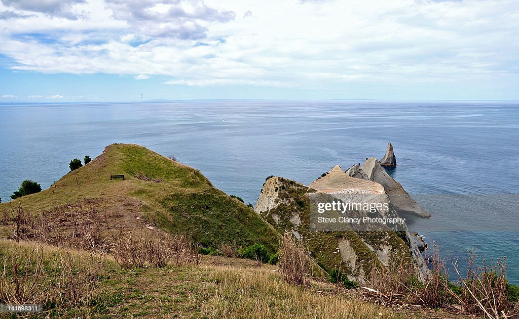 Cape Kidnappers : Stock Photo