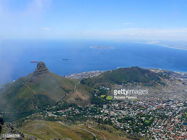 Cape Town Lion head