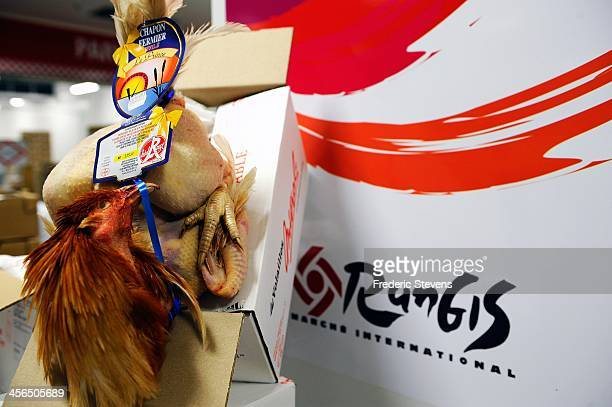 A capon is displayed in the poultry department of Rungis Market on December 13 2013 in Rungis France Rungis is the world's largest wholesale market...