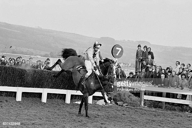 Captain Christy ridden by Bobby Beasley takes the last fence ahead of The Dikler before going on to win