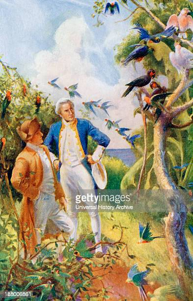Captain James Cook And Botanist Joseph Banks Examining The Wild Life And Flora In Botany Bay Australia From The Life And Voyages Of Captain James...