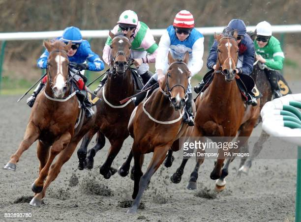 Captian Jacksparra ridden by jockey Neill Callan on their way to winning the Lingfield Park For Conferences Handicap at Lingfield racecourse