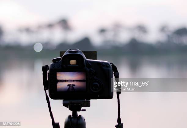 Capturing beauty of nature with camera with blur background.