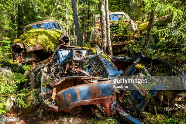 Car cemetery full of old and rusty cars