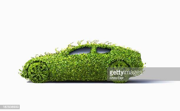Car covered in growing plants