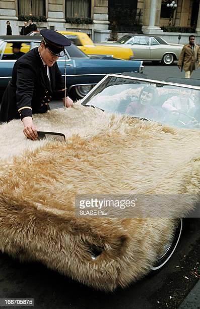 Car Covered With Fur In The Streets Of In New York City Aux EtasUnis à New York en mai 1967 une voiture recouvert de fourrure dans les rues de la...