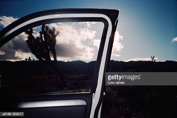 Car Door, Horizon and Tree