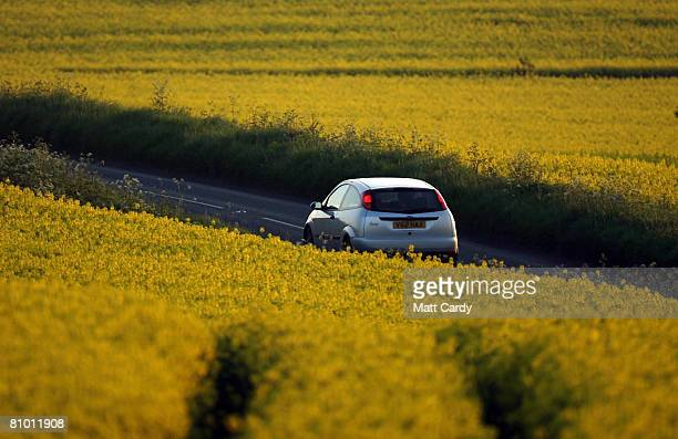 A car drives along a country road between fields of Oilseed Rape plants in bloom in the Cotswolds village of Tormarton on May 6 2008 near Tetbury in...