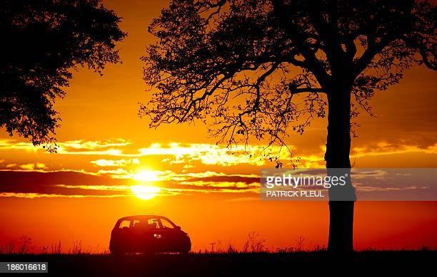 A car drives along an alley as the sun sets near Petersdorf eastern Germany on October 26 2013 AFP PHOTO / DPA / PATRICK PLEUL GERMANY OUT