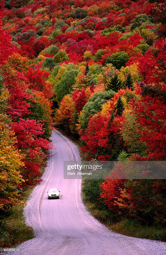 Car driving on road in Autumn, United States of America