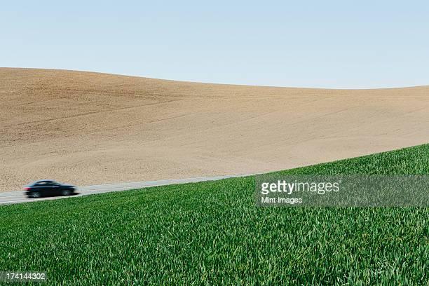 お車の運転を通り、風景や豊かな緑に囲まれた、