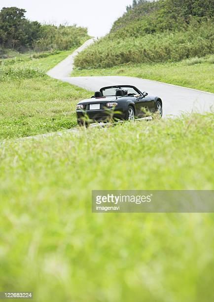 A car in the grassland