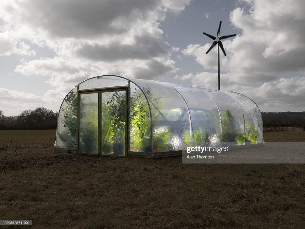 Car inside greenhouse