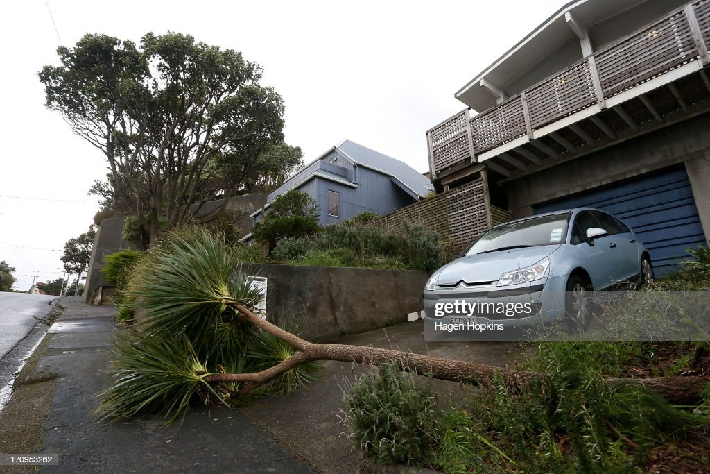 A car is blocked in by a fallen tree on Quebec Street after a large storm on June 21, 2013 in Wellington, New Zealand. Winds reached up to 200km per hour during the storm and around 30,000 homes were left without power across the Wellington region.