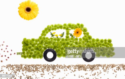 A car made of flowers : Foto de stock