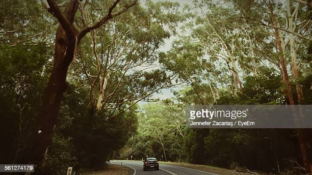 Car Moving On Road Passing Through Forest