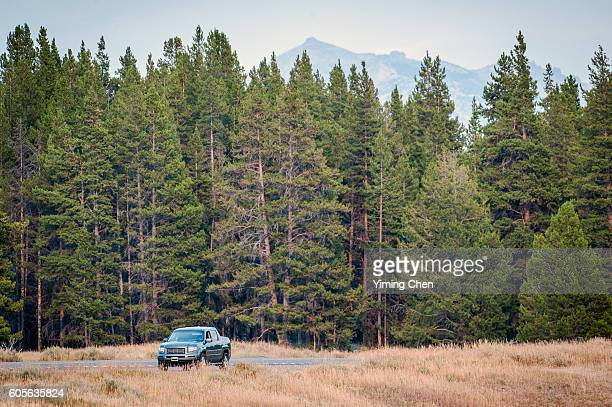 Car near the Forest in Yellowstone National Park