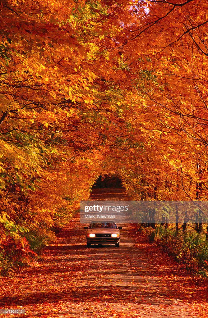 Car on back road in autumn, United States of America : Stock Photo