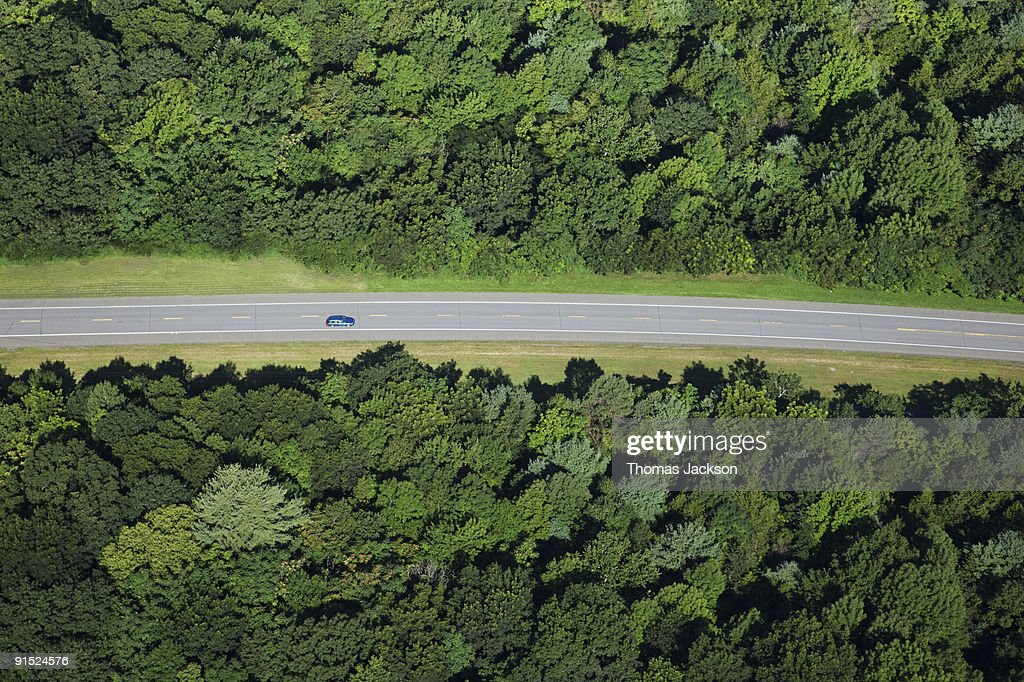 Car on road through forest