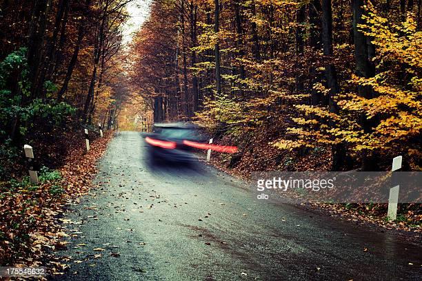 Voiture passe par une forêt automne sur route