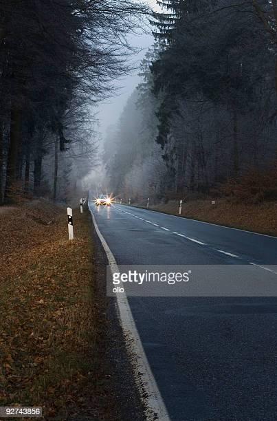 Remonté voiture avec les phares sur un chemin forestier lonesome