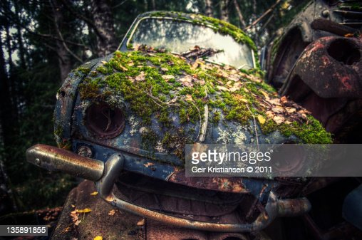 Car wreck in jungle : Stock Photo