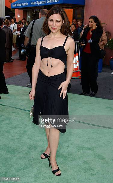 Cara Buono during World Premiere Of 'The Hulk' Hollywood at Universal Amphitheatre in Universal City California United States