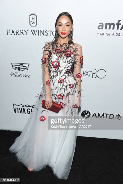 Cara Santana at amfAR Los Angeles 2017 at Ron Burkle's Green Acres Estate on October 13 2017 in Beverly Hills Californi