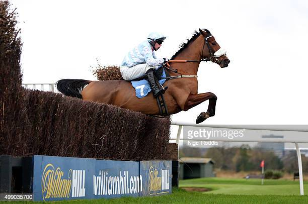 Caraline ridden by Joe Colliver jumps the last fence to win The STP Construction Handicap Steeple Chase race at Newcastle racecourse on November 28...