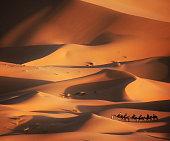 Caravan in the desert, Merzouga, Morocco