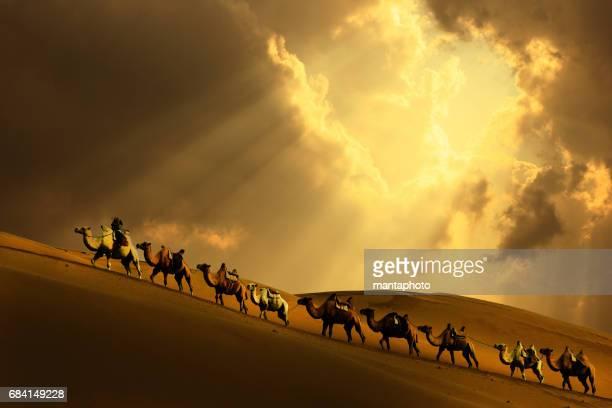 Caravan dans le désert