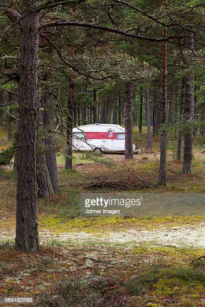 Caravan parked in forest