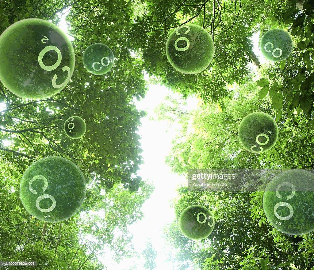 Carbon dioxide molecules floating through trees (digital composite)