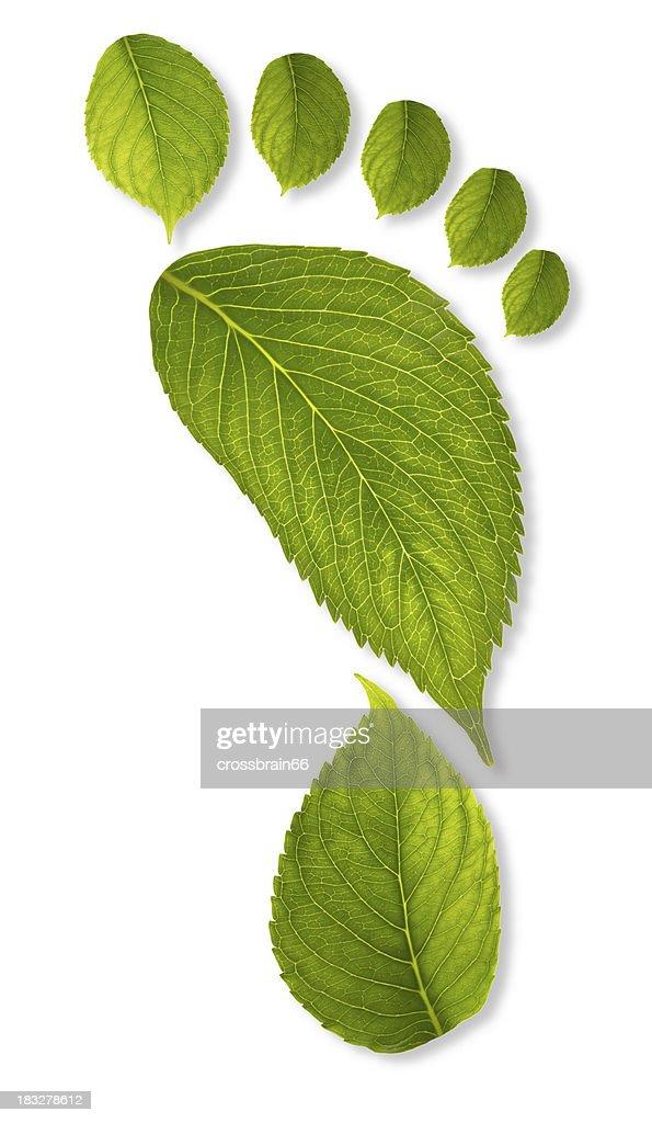 carbon footprint concept XXXL