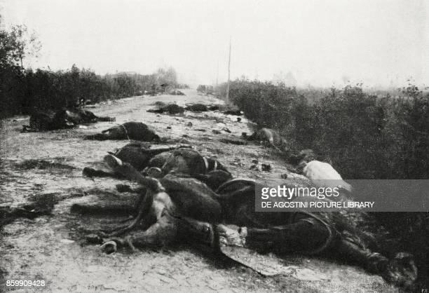 Carcasses of Austrian artillery horses amidst Sacile and Pordenone Italy World War I from l'Illustrazione Italiana Year XLV No 45 November 10 1918