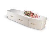 cardboard; bio-degradable; eco; ecological; coffin; isolated; clipping path; box; case; casket; cemetery; closed; dead; death; eternity; funeral; grave; object ; white background; wood; wooden; green;