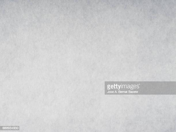 Cardboard or paper antique texture background light gray color