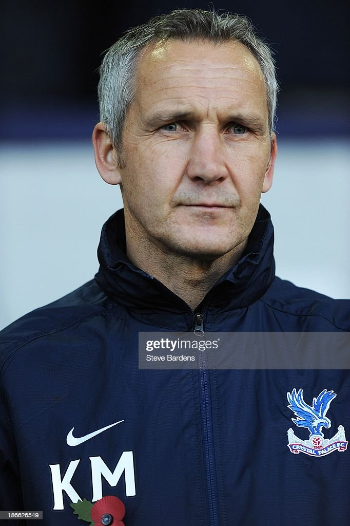 Caretaker manager Keith Millen of Crystal Palace looks on before the Barclays Premier League match between West Bromwich Albion and Crystal Palace at The Hawthorns on November 2, 2013 in West Bromwich, England.