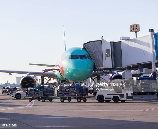 Cargo cars carrying passenger's baggages to airplane