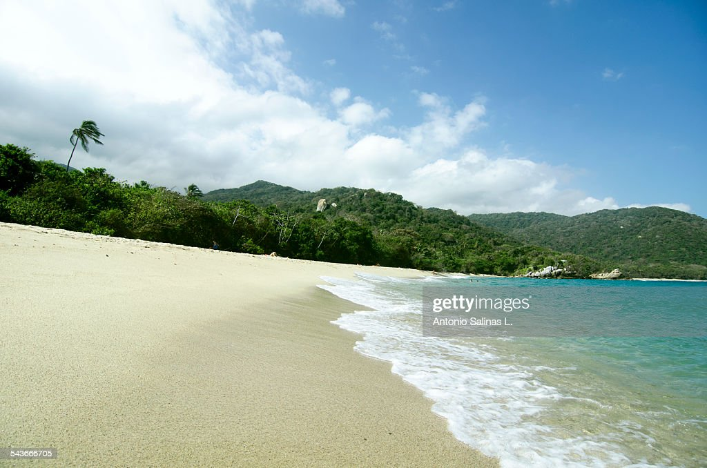 Caribbean beach near the jungle