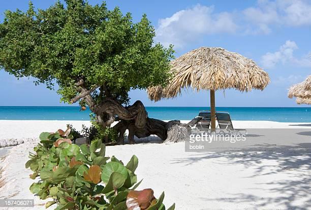 Praia das Caraíbas